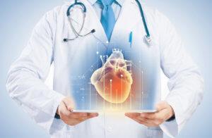 Изучение сердца и сосудов человека