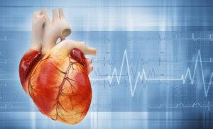 Сопутствующие симптомы учащенного сердцебиения