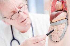 Рекомендации гастроэнтерологов по профилактике заболеваний ЖКТ