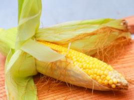 Применение рылец кукурузы в народной медицине