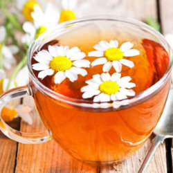 Чай из ромашки при беременности: польза и вред напитка