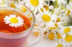 Классические способы заваривания ромашкового чая