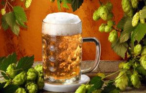 Лечебный напиток с пивом и растительными травами