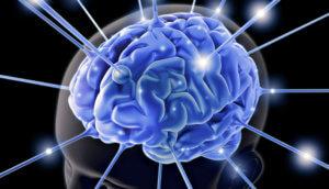 Нейронные связи в головном мозге