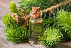 Безопасное использование эфирного масла пихты