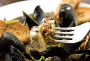 Польза от морских моллюсков