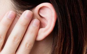 Анатомические отделы уха