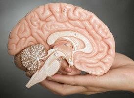 Правила профилактики инфаркта мозга