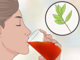 Использование отваров из трав при вялом пищеварении