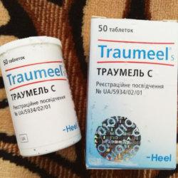 Препарат Траумель: состав и разновидности лекарственных форм, аналоги