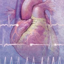 Мерцание предсердий: определение понятия, причины болезни и ее лечение