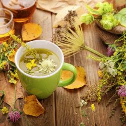 Лечение высокого давления народными средствами, травы от гипертонии